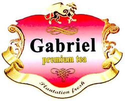 plantation fresh; gabriel premium tea