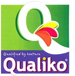 qualified by nature; qualiko