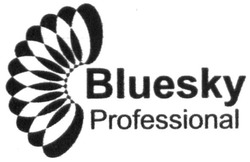 bluesky professional