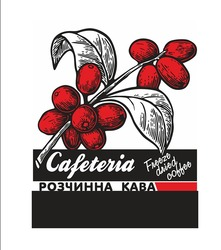 freeze dried coffee; cafeteria; розчинна кава